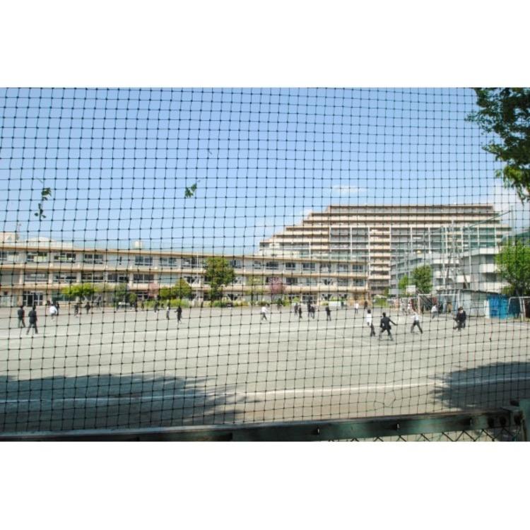 第四中学校(約520m)