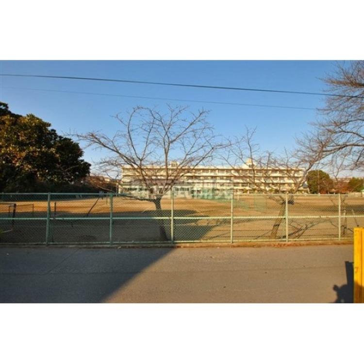 向陽中学校(約850m)