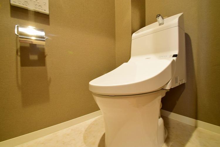 リフォームされたトイレは、新しい壁により清潔感がありますね