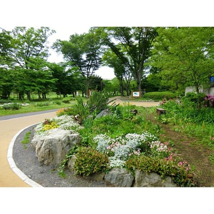 狭山公園(約550m)