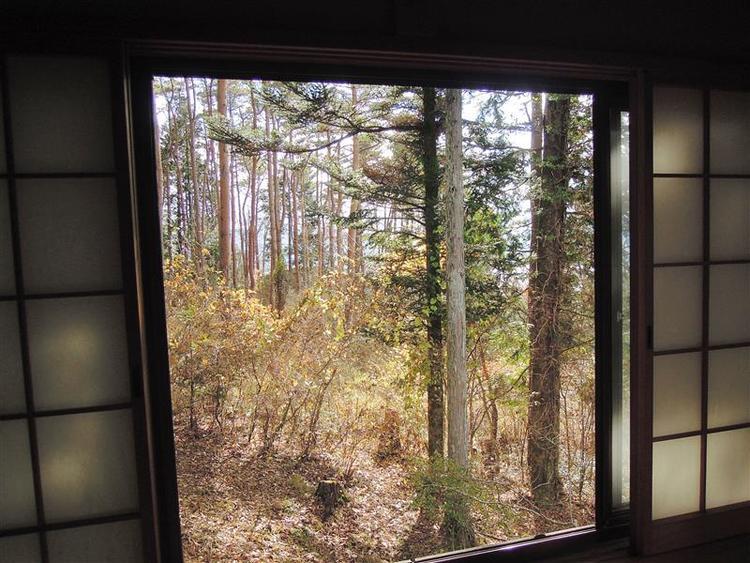 和室からの眺望です。豊かな自然を感じられます!