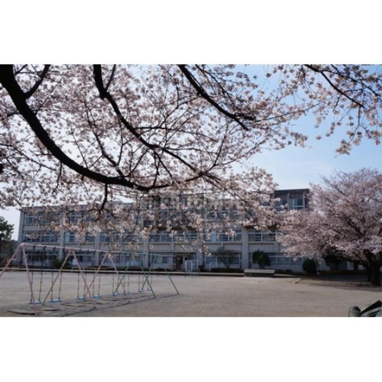 豊岡小学校(約1200m)