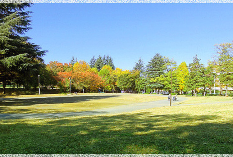 美しが丘公園 距離550m