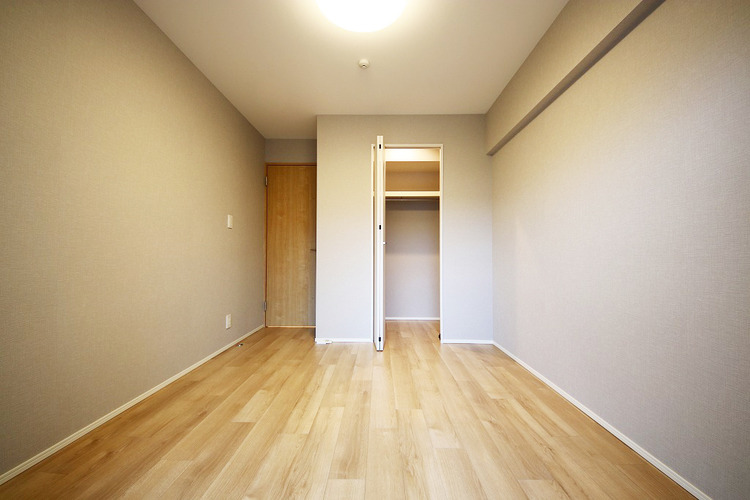 洋室約5.3帖収納スペース