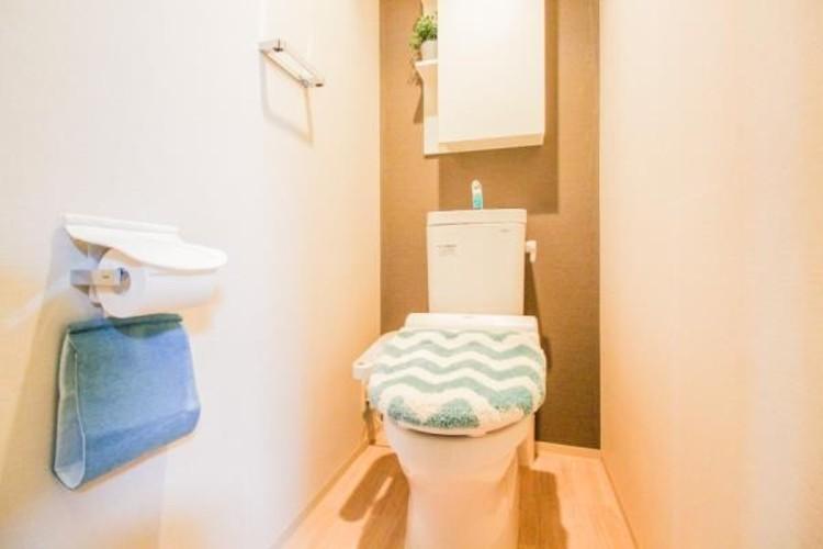 いつも清潔なスペースであってほしいのが毎日使うトイレです。掃除がしやすいのはもちろん、落ち着けるスペースとして機能することも大切です。
