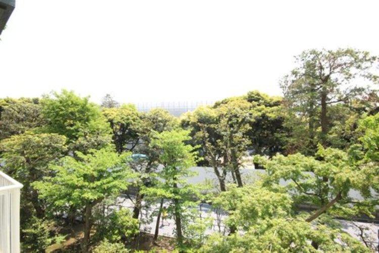目の前に広がる緑豊かな眺望が、安らぎと贅を生活に加えます。