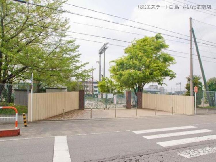 戸田市立新曽中学校 約1300m