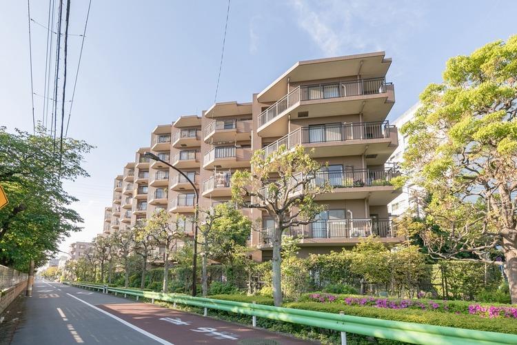緑に囲まれ、買物施設が近隣に充実した住環境の良いマンションです。