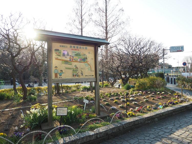 赤塚溜池公園まで947m