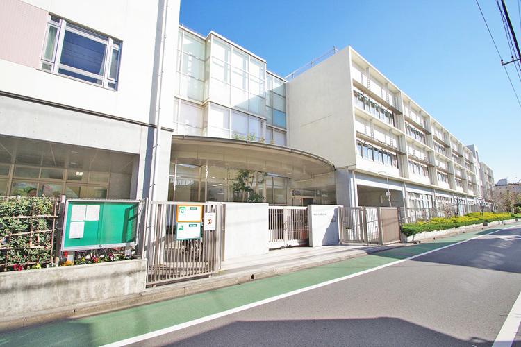 桜町小学校 距離250m