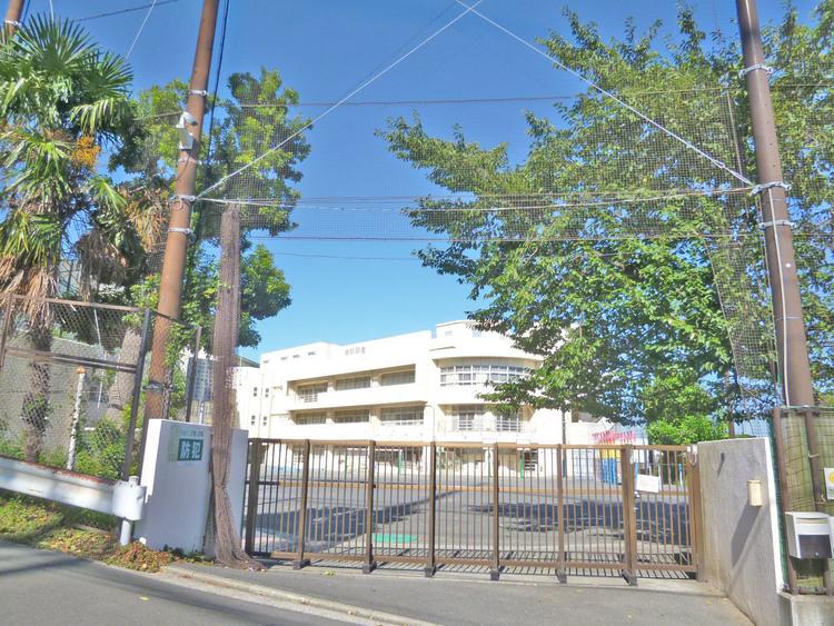 横浜市立矢上小学校 距離1500m
