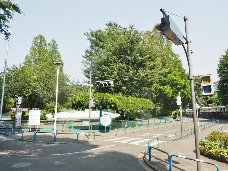 板橋交通公園まで1100m