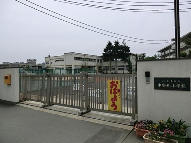 中野北小学校 317m