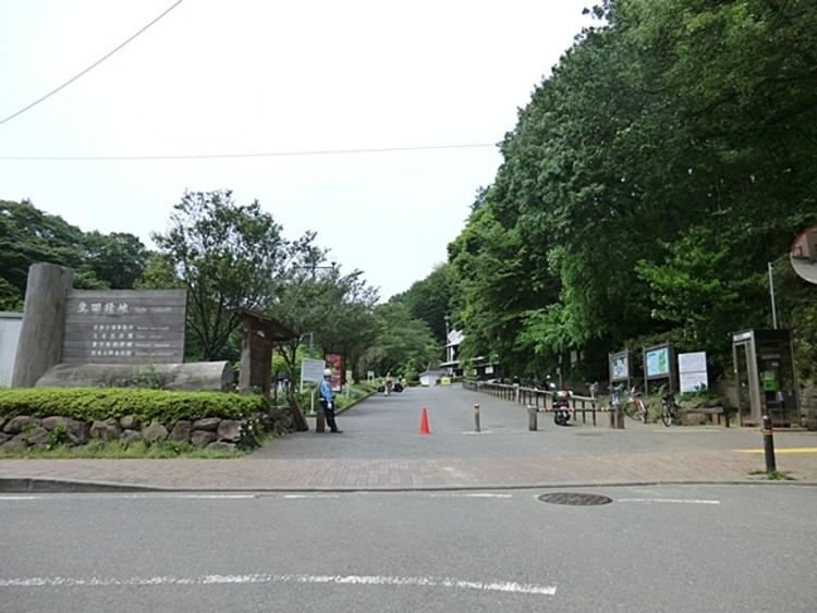 生田緑地(本園) 距離約1600m