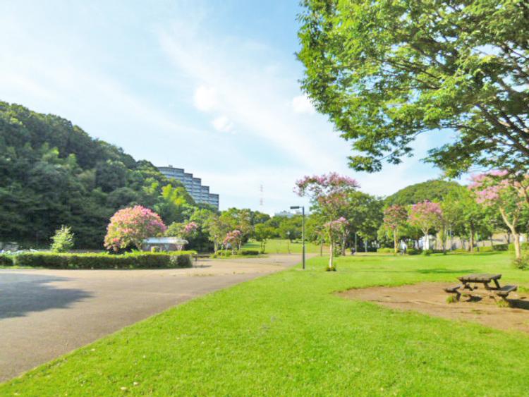 山田富士公園 距離600m