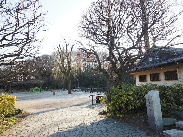 赤塚溜池公園まで545m