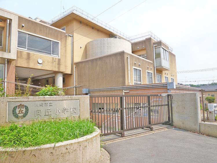 川崎市立向丘小学校 距離450m