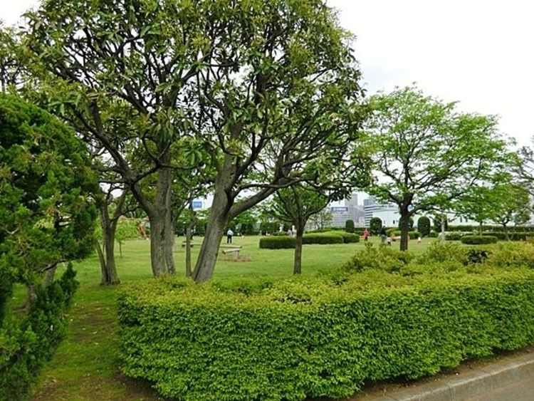 芝浦中央公園アカネ・ハリマグループ 徒歩5分。 390m