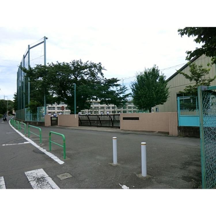 石神井西中学校(約250m)