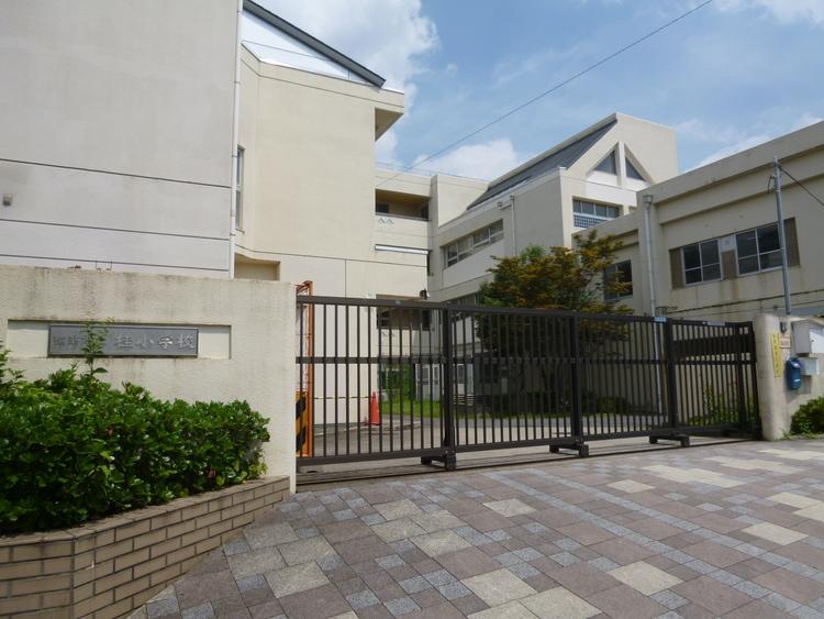 横浜市立桂小学校  距離600m