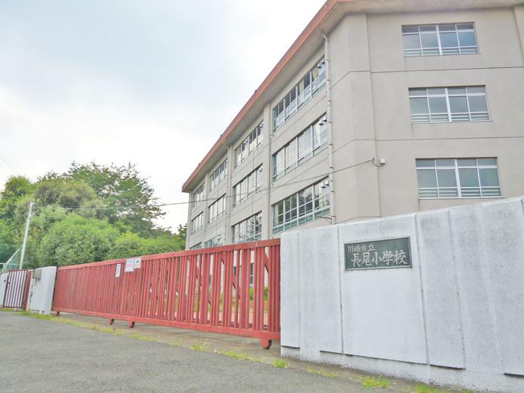 川崎市立長尾小学校 距離450m