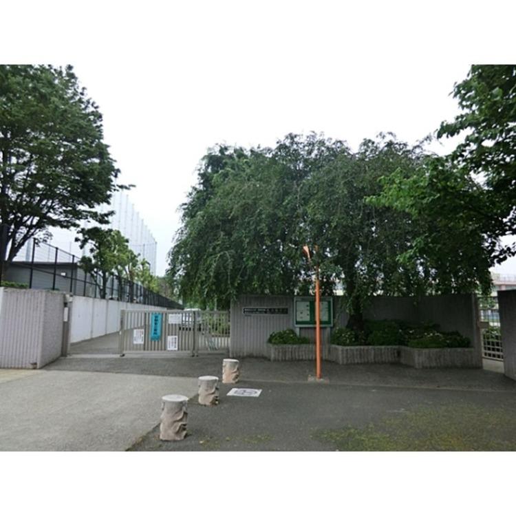 練馬区立大泉学園中学校(約600m)
